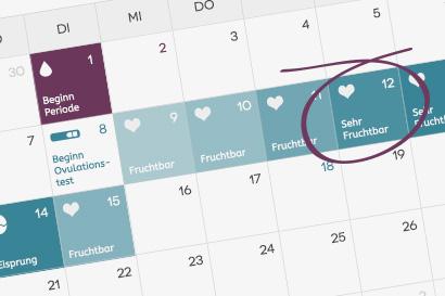 Kalender Eisprung